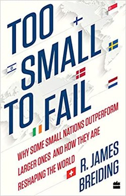 too small to fail book.jpg